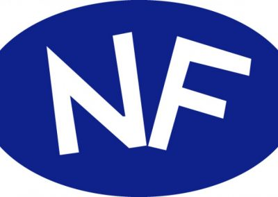 logo_nf-998208229